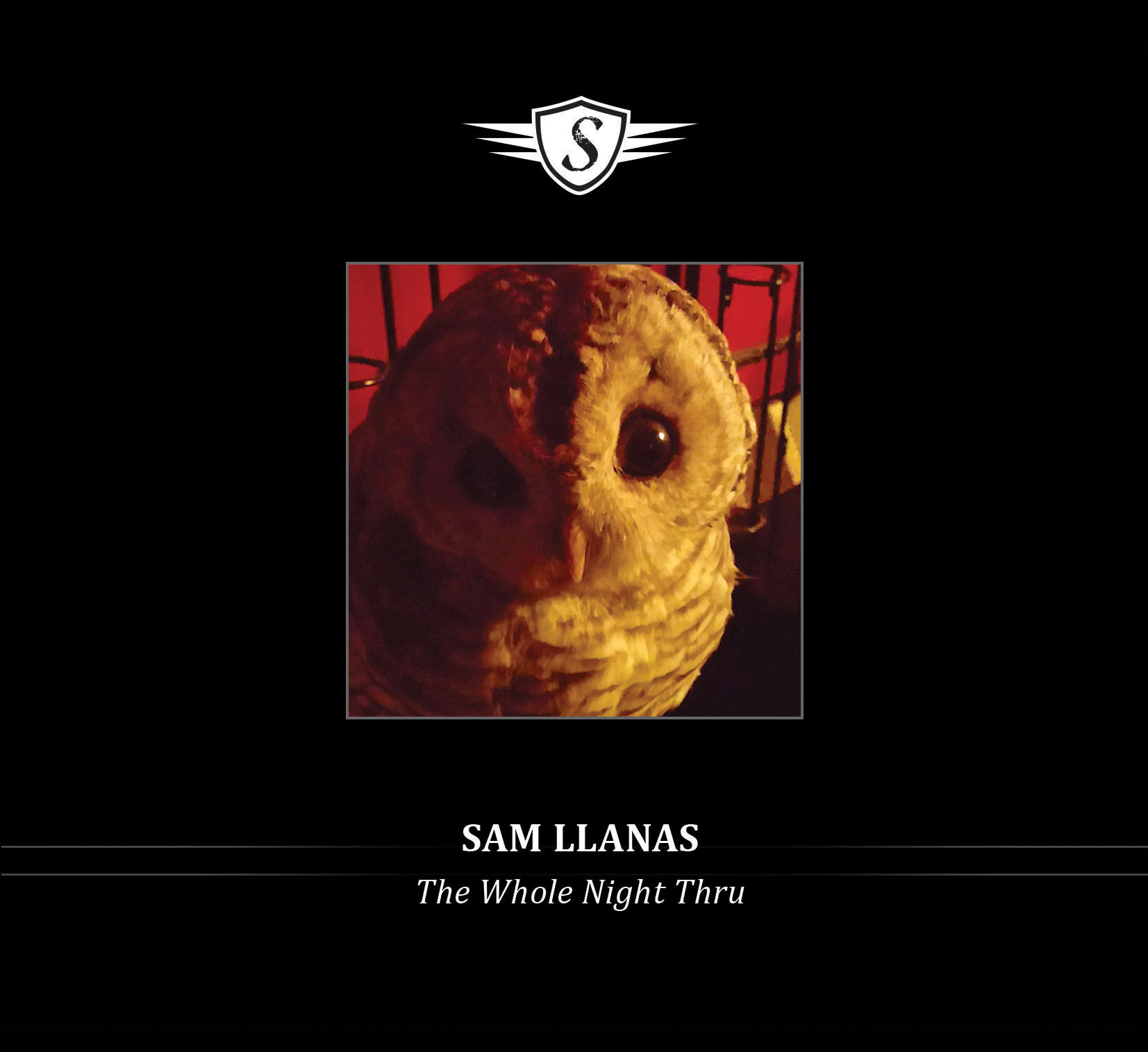 Welcome to the Official Sam Llanas Website!